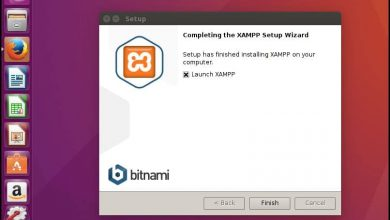 5 steps for Install Xampp in Ubuntu / Debian / Linux